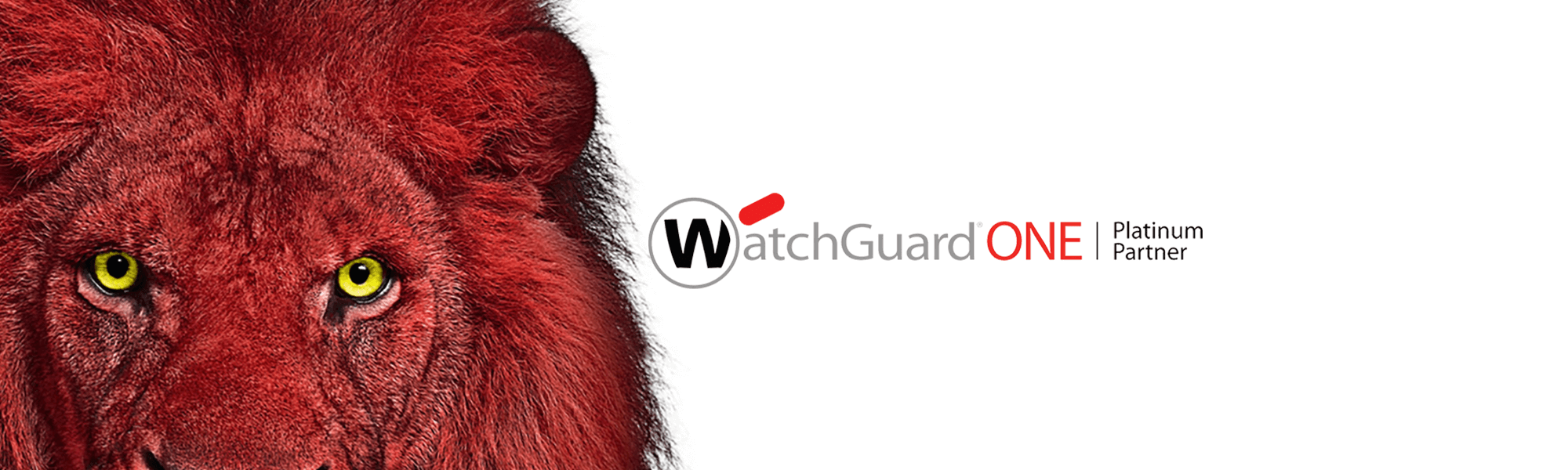 watchguard_platinum1 Watchguard Platinum Partner - PCS Group